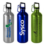 Classic Stainless Bottle With Carab