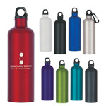 25 Oz Stainless Steel Bike Bottle