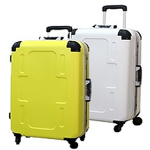 Spinner Luggage Case