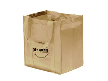 Big Shopper Grocery Bag